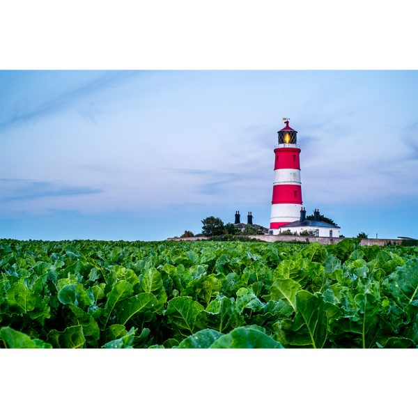 Happisburgh Lighthouse at Dawn 16x12 Print