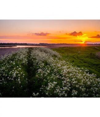 River Yare Sunset Norfolk Broads Greetings Card