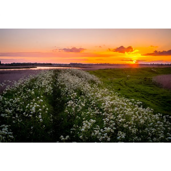 River Yare Sunset Norfolk Broads