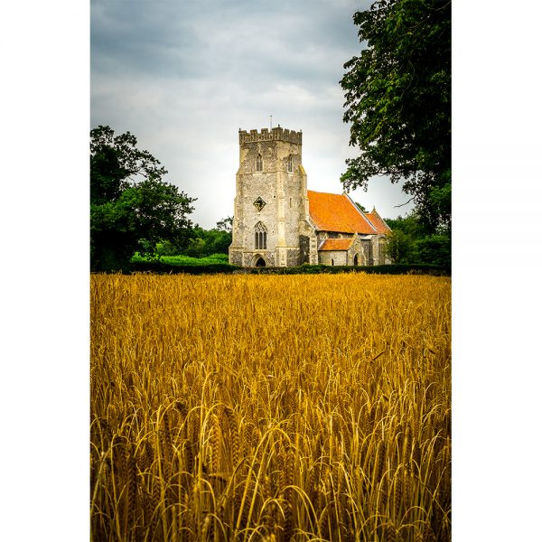 Thompson St Martin's Church Over a Golden Field Poster