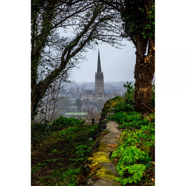 Ketts Hills View Of Norwich Cathedral