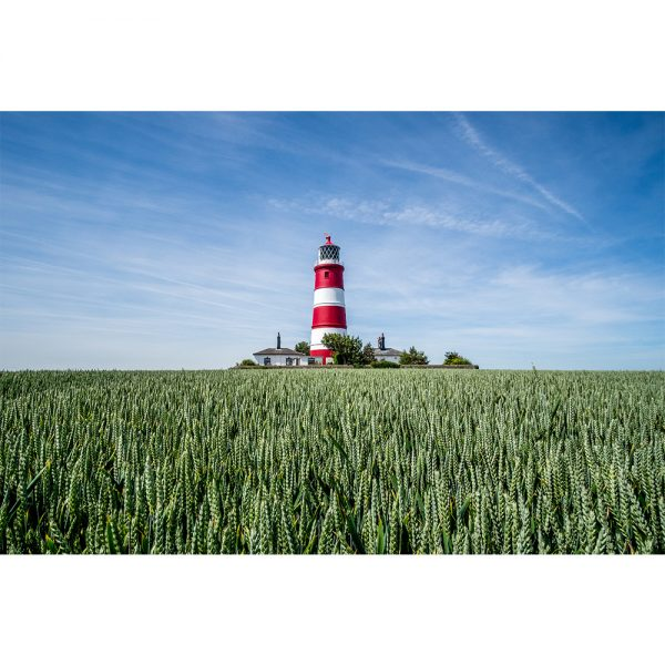 Happisburgh With Green Wheat Field